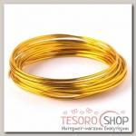Проволока для плетения D=2,5мм, намотка 5м, цвет золотой