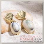 Серьги Ракушка малая, цвет серый в золоте - бижутерия