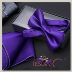 Набор джентльмена Запонки/платок/бабочка цвет фиолетовый - бижутерия